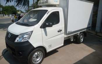 star-truck-cab-simples-c-carga-frigorifica